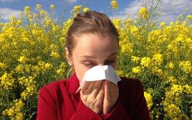 alergie krzyżowe, alergia, pyłki, wiosna, pylenie