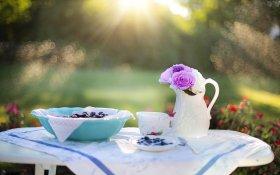 posiłki, świat odżywiania, śniadanie, drugie śniadanie, obiad, podwieczorek, kolacja, pięć posiłków, energia