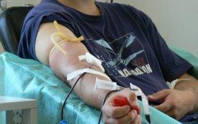 dieta, krew, donacja, honorowe krwiodawstwo, co zjeść przed oddaniem krwi