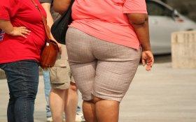 otyłość, epidemia otyłości, nadwaga, dietetyk poznań